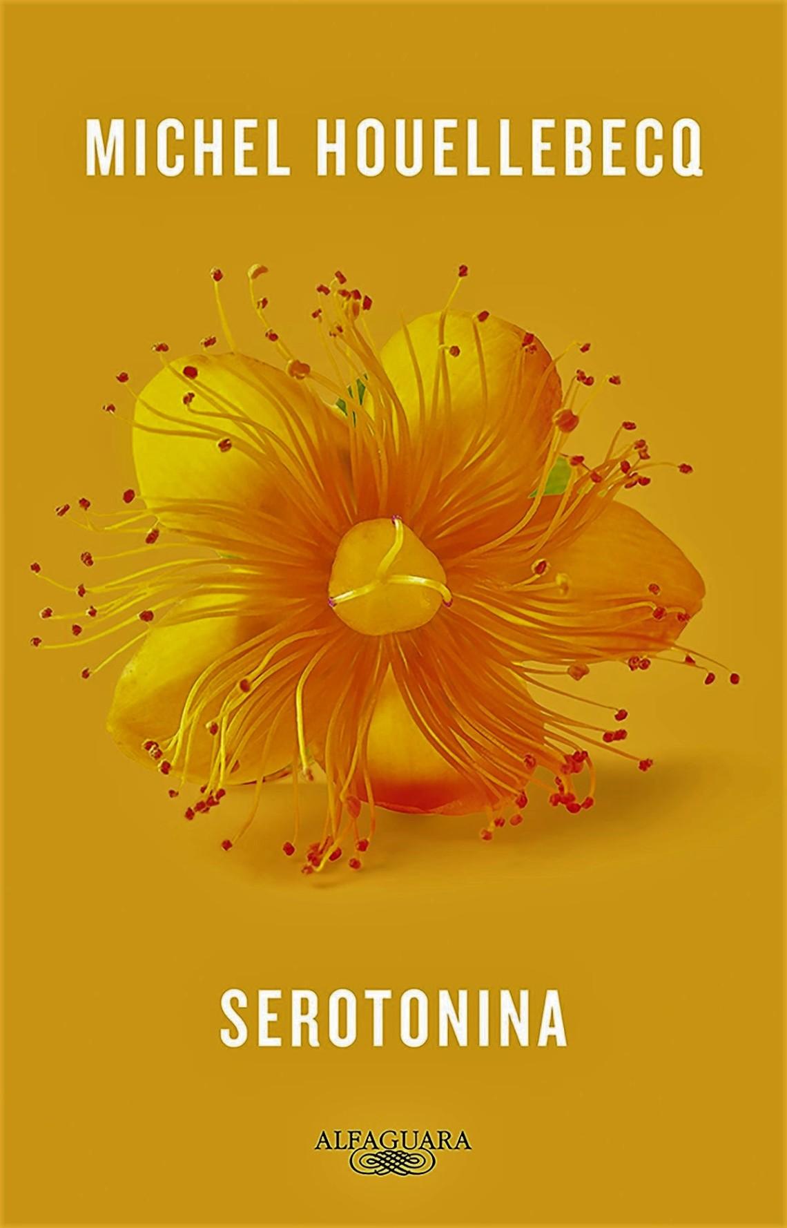 serotonina-6